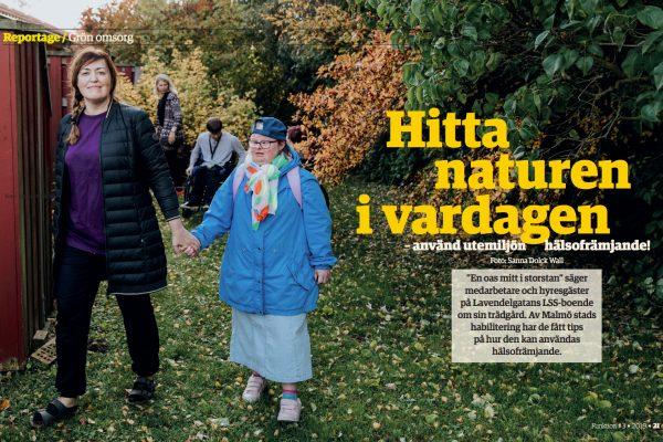 Funktion Malmö nr 3, 2019